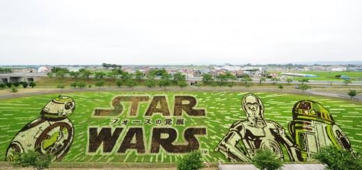 Das Star Wars Reisfeld - Bild: Facebookseite vom Dorf Inakadate